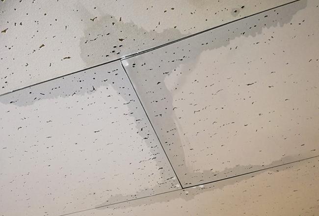 雨漏り防止・予防